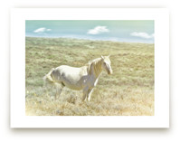 Wild Horse Lost in the... by Jenifer Bacon