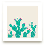 Blooming Prickly Pears by Jessica Druxman