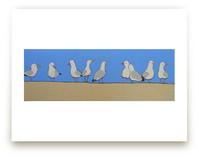 Gossiping Gulls by Rachel Nelson