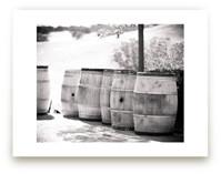 Vineyard Days 1