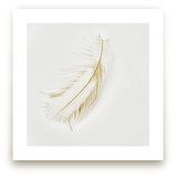 Feather Light A - Series Wall Art Prints