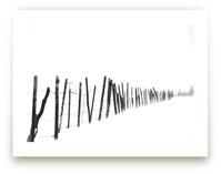 Barb Wire by Leslie Le Coq