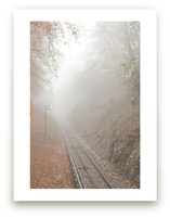 Mountain train track in misty fall.