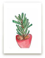 Red Pot Succulent Wall Art Prints
