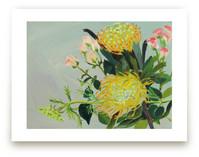 Pincushion Protea Paint... by Debra Bianculli