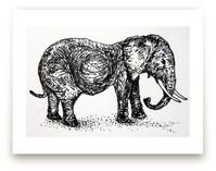 A pregnant elephant