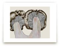 Blewit Mushroom Pair by Alaine Ball