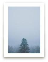 Foggy Frida by Katie Short