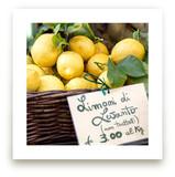Limoni di Levanto