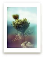 Skyline Drive Flora Yel... by Meghan Quinn