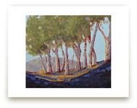 Eucalyptus Grove by Rachel Nelson