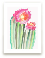 Cactus Flower by Christi Parks