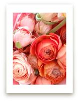 Ranunculus Tangle by Kate Wong