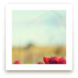 Desert Bloom by Gabrial Reising