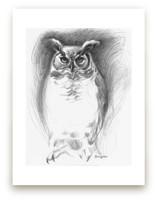 Omaha Horned Owl by Tracy Ann