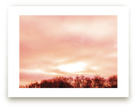 Rosy Daydream by Monica Janes Fine Art