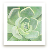 Garden Velvet by Heather M. Roberts