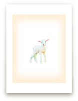 Baby Lamb by hadley hutton