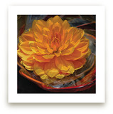 Golden Water Lily Dahli... by A Maz Designs