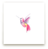 Hello Hummingbird