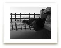 La Jolla Beach Landscap... by aeryn donnelly design