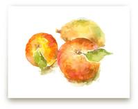 Ranch Apples by Joseph Weber