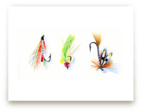 On the Fly 2 by Stacey Brod