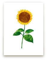 Hello, Sunflower!