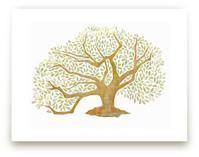 Tree of Life, Audubon P... by Amelie Conger