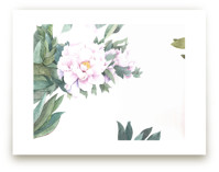 Chinese Peonies by XL