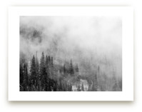 Misty Mountain Pines by Abby Niziol