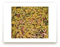 Green Olive Crimson by Mariecor Agravante