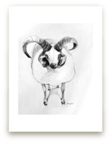 Jacob sheep by Tracy Ann