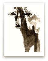 The Gaze of the Cow by Alaine Ball