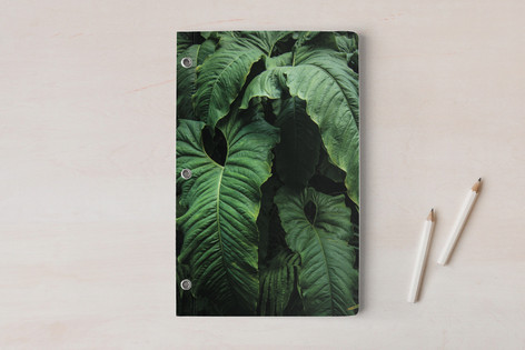 The Jungle Room - Part 1 Notebooks