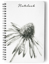 Coneflower by Corinne Aelbers