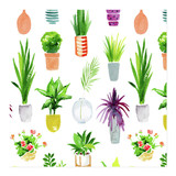 Potted Plants by sue prue