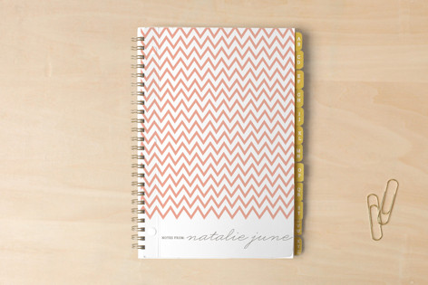 The Perfectionist Journals