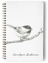 Chickadee by Corinne Aelbers