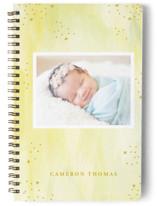 Sweetness Notebooks