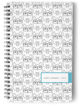 Owls Journals