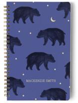 Bears In The Night by Zoe Pappenheimer