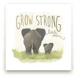 Elephant Bums by Rio Grange
