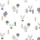 Cool Cacti