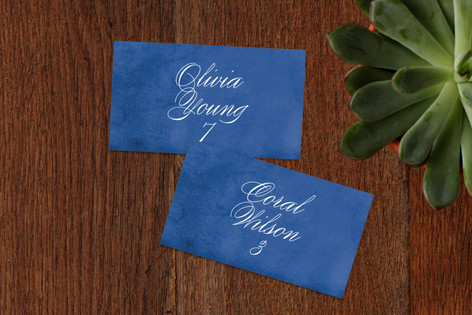 Aviary and Ink Wedding Place Cards