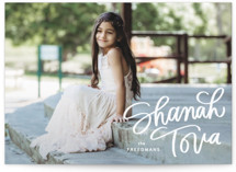 Shanah Tova by Erin L. Wilson