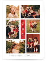 Candy Cane Joy Holiday Photo Cards