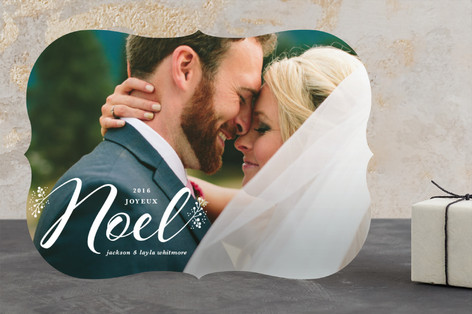 Beautiful Noel Holiday Photo Cards