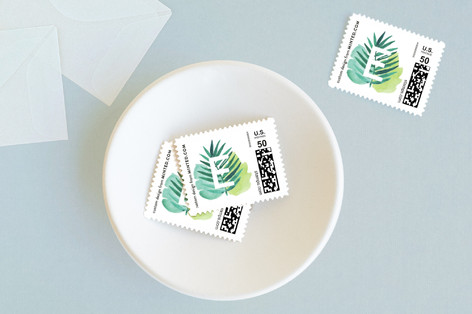 Tropical Foilage Baby and Kids Stamps