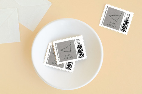 Little Capricorn Baby and Kids Stamps